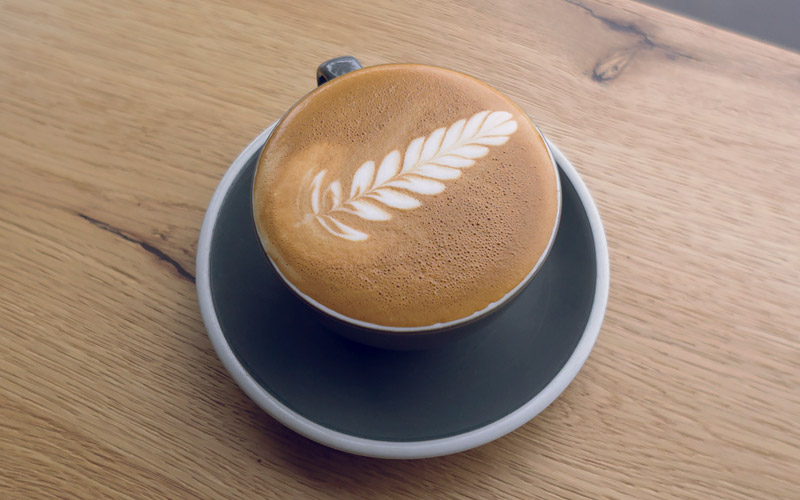 latte art guide - the fern - step I
