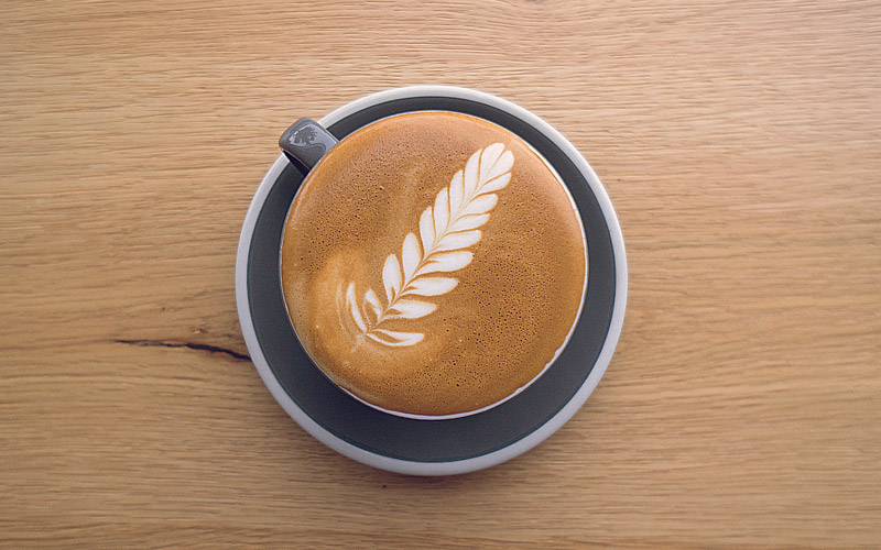 news: latte art : 03 : The Fern